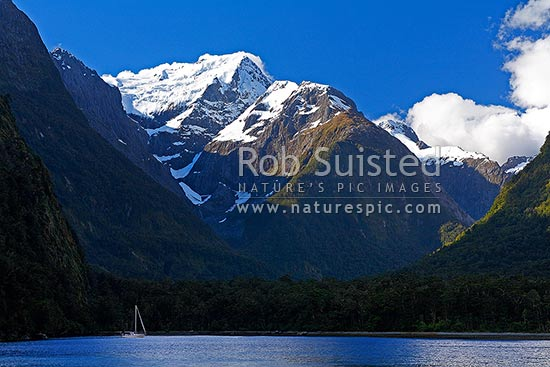 Milford Sound with a yacht moored in Harrison Cove, under Mount Pembroke (2015m) and Pembroke Glacier, and Mt Te Hau (1703m) behind, Milford Sound, Fiordland National Park, Southland District, Southland Region, New Zealand (NZ) stock photo.