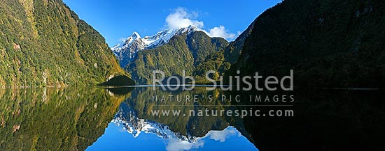 Doubtful Sound, Hall Arm winter reflections. Snow covered Mount Danae (1495m) centre. Fiordland National Park. Panorama, Doubtful Sound, Fiordland National Park, Southland District, Southland Region, New Zealand (NZ) stock photo.