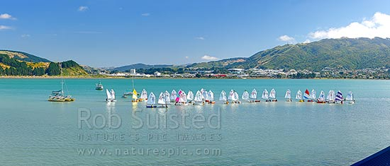 Titahi Bay Boating club optimist class boat racing regatta for young people on Porirua Harbour, with city beyond. Colonial Knob in distance, Titahi Bay, Porirua City District, Wellington Region, New Zealand (NZ) stock photo.