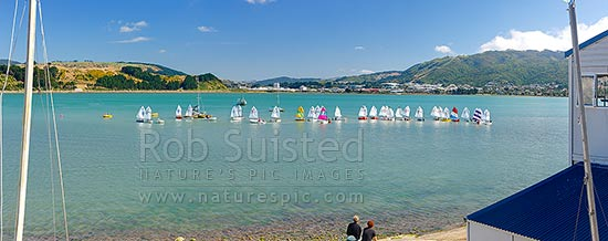Titahi Bay Boating club optimist class boat racing regatta for young people on Porirua Harbour, with city beyond. Parents looking on. Panorama, Titahi Bay, Porirua City District, Wellington Region, New Zealand (NZ) stock photo.