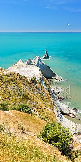 Cape Kidnappers saddle gannet colony, with Hawke Bay beyond, Cape Kidnappers, Hastings District, Hawke's Bay Region, New Zealand (NZ) stock photo.