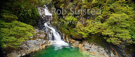 Christie Falls. Falls Creek waterfalls in the Hollyford River Valley, enroute to Milford Sound; panorama, Fiordland National Park, Southland District, Southland Region, New Zealand (NZ) stock photo.