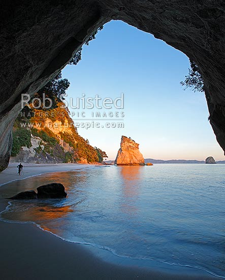 Cathedral Cove peaceful sunrise morning, looking through rock tunnel or cave. Coromandel Peninsula. Photographer photographing the dawn, Hahei, Coromandel Peninsula, Thames-Coromandel District, Waikato Region, New Zealand (NZ) stock photo.