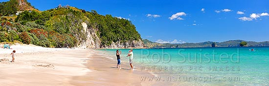 Hahei Beach with a family enjoying the sunny summers day. Pohutukawa trees flowering and an azure blue sea. Panorama, Hahei, Coromandel Peninsula, Thames-Coromandel District, Waikato Region, New Zealand (NZ) stock photo.