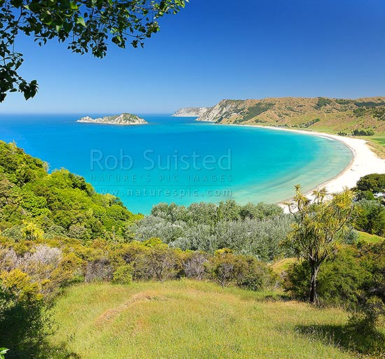 Anaura Bay with Motuoroi Island left and Marau Point in distance. Site of Captain James Cook landing in 1769. Square format, Anaura Bay, East Coast, Gisborne District, Gisborne Region, New Zealand (NZ) stock photo.