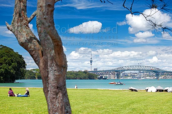 Auckland City, Harbour bridge and Sky Tower from the North Shore, with people enjoying sunny weather, Auckland, North Shore City District, Auckland Region, New Zealand (NZ) stock photo.