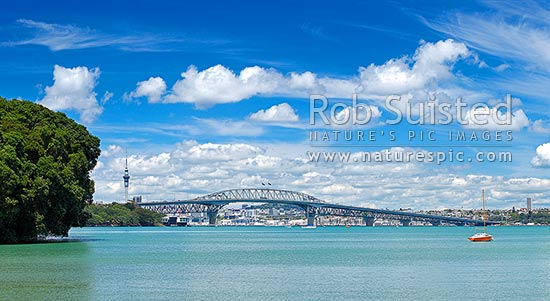 Auckland City, Harbour bridge and Sky Tower from the North Shore, with people enjoying sunny weather. Panorama, Auckland, Auckland City District, Auckland Region, New Zealand (NZ) stock photo.
