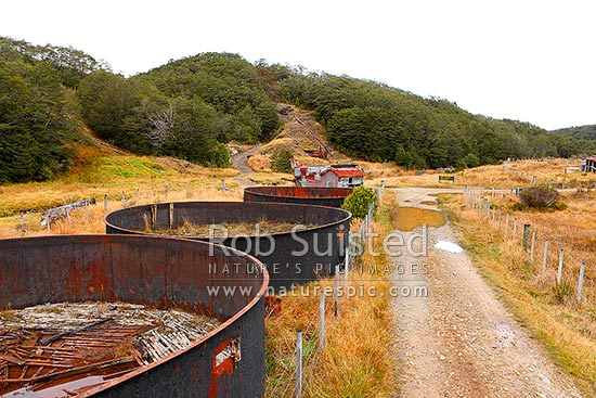 Big River quartz gold mine ruins of cynanide settling tanks at the historic site which operated from 1882 to 1942, Victoria Forest Park, Reefton, Buller District, West Coast Region, New Zealand (NZ).