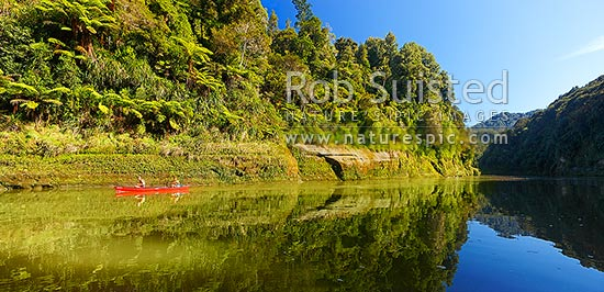 Whanganui River with two canoes paddling downstream. A very popular multi-day trip with visitors canoeing the river. Panorama, Whanganui National Park, Wanganui District, Manawatu-Wanganui Region, New Zealand (NZ) stock photo.