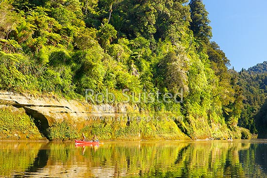 Whanganui River with two canoes paddling downstream. A very popular multi-day trip with visitors canoeing the river, Whanganui National Park, Wanganui District, Manawatu-Wanganui Region, New Zealand (NZ) stock photo.