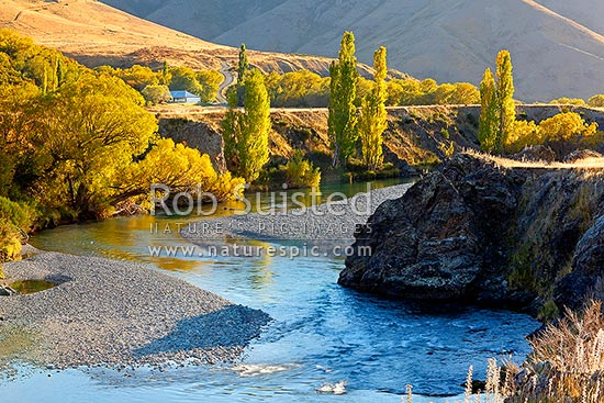 Acheron Accommodation house by the Clarence River, historic cobb construction. Autumn colours on trees, Molesworth Station, Hurunui District, Canterbury Region, New Zealand (NZ) stock photo.