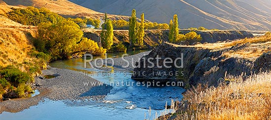 Acheron Accommodation house by the Clarence River, historic cobb construction. Autumn colours on trees. Panorama, Molesworth Station, Hurunui District, Canterbury Region, New Zealand (NZ) stock photo.
