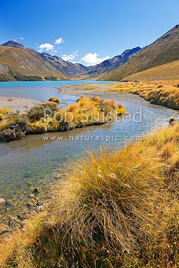 Lake Tennyson Scenic Reserve near the head of the Clarence River, inland Marlborough, St James Station, Hurunui District, Canterbury Region, New Zealand (NZ) stock photo.