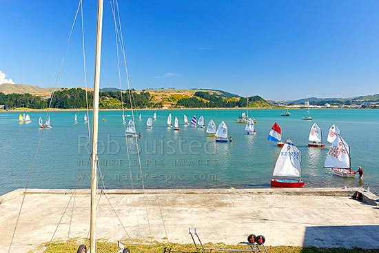 Titahi Bay Boating club optimist class boat racing sailing regatta for young people on Porirua Harbour, with city beyond, Titahi Bay, Porirua City District, Wellington Region, New Zealand (NZ) stock photo.
