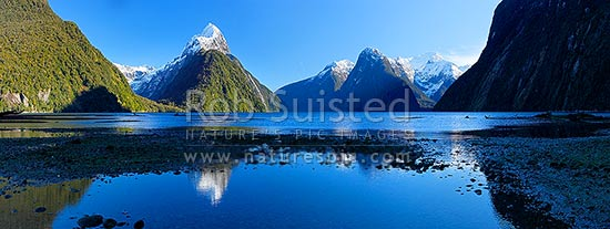 Snow capped Mitre Peak reflecting in Milford Sound Fiordland. Mitre Peak left (1683m). The Lion (1302m) and Mt Pembroke (2015m) and Harrison Cove at right. Winter panorama, Milford Sound, Fiordland National Park, Southland District, Southland Region, New Zealand (NZ) stock photo.