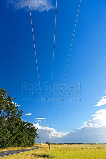 Central Hawke's Bay road, farmland and powerlines, Takapau, Hawke's Bay Region, New Zealand (NZ) stock photo.