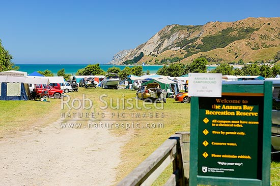 Anaura Bay Recreation Reserve DOC campsite. People enjoying summer holidays, boating, camping, the beach and sun, Anaura Bay, Gisborne District, Gisborne Region, New Zealand (NZ) stock photo.