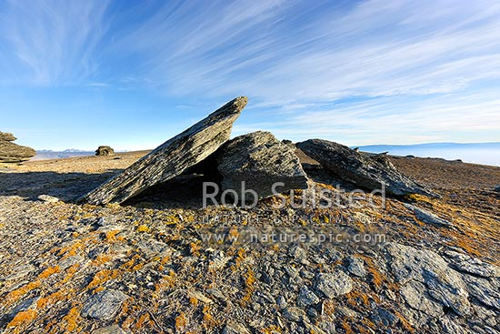 The Old Man Range / Kopuwai Scenic Reserve, with alpine rock tors and cushion plant vegetation. Obelisk Range, Alexandra, Central Otago District, Otago Region, New Zealand (NZ) stock photo.