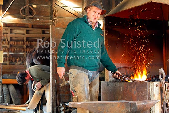 Farrier Patrick Schimanski in old Molesworth Station smithy working the old forge, while training the new stockmen to shoe their horses for the year, Molesworth Station, Marlborough District, Marlborough Region, New Zealand (NZ) stock photo.