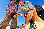 Farrier shoeing horse