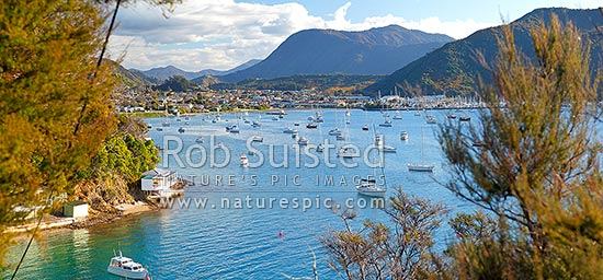 Waikawa Bay with yachts and marina, Marlborough Sounds near Picton. Panorama, Waikawa Bay, Marlborough District, Marlborough Region, New Zealand (NZ) stock photo.