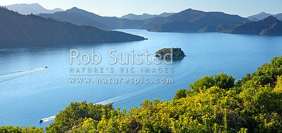 Queen Charlotte Sound in the Marlborough Sounds. Wedge Point, Grove Arm and Mabel Island centre, with powerboat heading for Picton. Panorama, Picton, Marlborough Sounds, Marlborough District, Marlborough Region, New Zealand (NZ) stock photo.