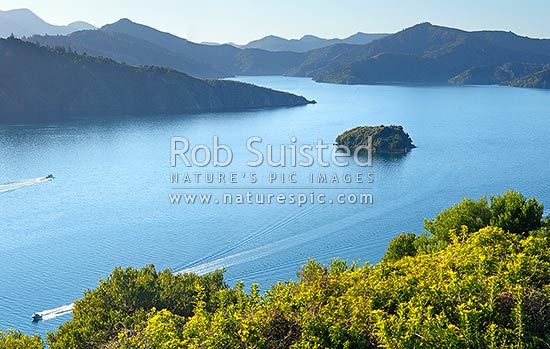 Queen Charlotte Sound in the Marlborough Sounds. Wedge Point, Grove Arm and Mabel Island centre, with powerboat heading out from Picton, Picton, Marlborough Sounds, Marlborough District, Marlborough Region, New Zealand (NZ) stock photo.