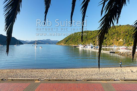 Picton foreshore and beach on a calm evening, with yachts moored in the bay, Picton, Marlborough Sounds, Marlborough District, Marlborough Region, New Zealand (NZ) stock photo.