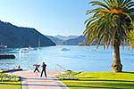 Picton foreshore
