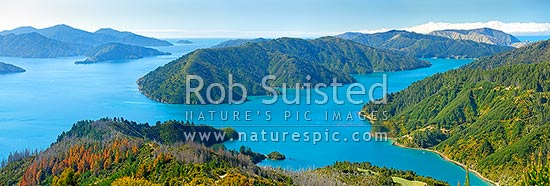 Marlborough Sounds panorama with Queen Charlotte Sound left, Arapawa Island centre, Tory Channel right and Hitaua Bay bottom, Marlborough Sounds, Marlborough District, Marlborough Region, New Zealand (NZ) stock photo.