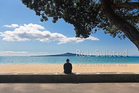 Mission Bay Beach Rangitoto Island And Motukorea Channel