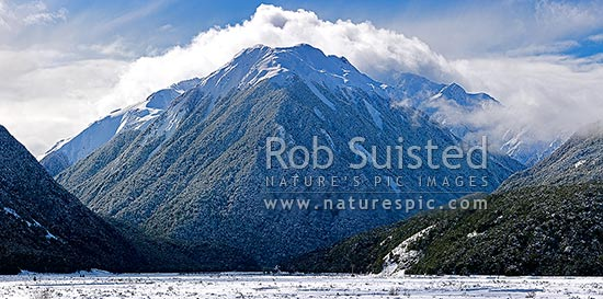 Bealey River Valley (left) with Mount O'Malley (1703m) cloaked in heavy winter snowfall. Mingha River valley right, Arthur's Pass National Park, Selwyn District, Canterbury Region, New Zealand (NZ) stock photo.