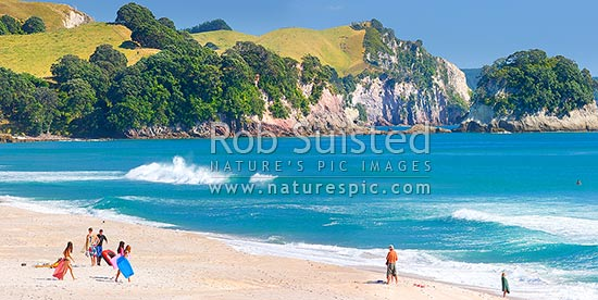 Whiritoa Beach on the Coromandel, with people enjoying bodyboarding, swimming, surfing, walking and sunbathing in summer warmth. Coromandel Peninsula. Panorama, Whiritoa, Hauraki District, Waikato Region, New Zealand (NZ) stock photo.