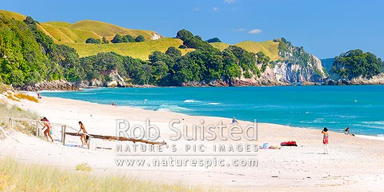 Coromandel Beach at Whiritoa, with people enjoying relaxing, bodyboarding, swimming, surfing, walking and sunbathing in summer warmth. Coromandel Peninsula. Panorama, Whiritoa, Hauraki District, Waikato Region, New Zealand (NZ) stock photo.
