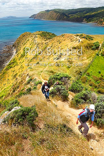 Makara Beach walkway, a popular walk close to Wellington City gives magnificent dramatic sea views to Mana and Kapiti Islands, Makara Beach, Wellington City District, Wellington Region, New Zealand (NZ) stock photo.