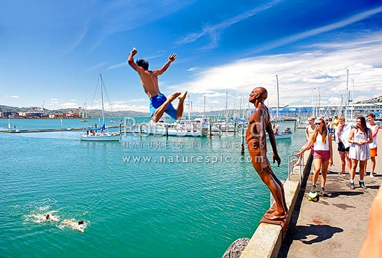 Wellington City waterfront, swimmers and divers enjoying the summer day near Chaffers Marina. Sculpture Solace in the Wind by Max Pattie, Wellington, Wellington City District, Wellington Region, New Zealand (NZ) stock photo.