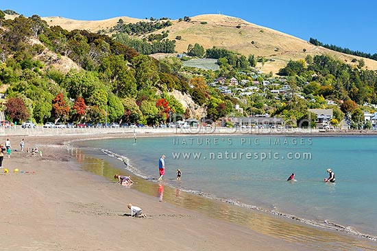 Akaroa, with families and people enjoying summer swimming in French Bay, with houses, shops and vineyards beyond, Akaroa, Christchurch City District, Canterbury Region, New Zealand (NZ) stock photo.