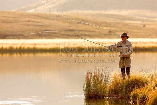 Trout fisherman casting for trout in Lake Sedgemere, on a beautiful golden morning, Molesworth Station, Marlborough District, Marlborough Region, New Zealand (NZ) stock photo.