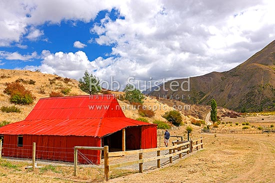 Historic Quail Flat barn or shed at the historic complex dating from the 1860's, Clarence Reserve, Kaikoura District, Canterbury Region, New Zealand (NZ) stock photo.
