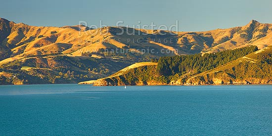 Akaroa Harbour with sailboat in front of Lushington Bay, Takamatua. Okains Peak far right. Late summer panorama, Banks Peninsula, Christchurch City District, Canterbury Region, New Zealand (NZ) stock photo.