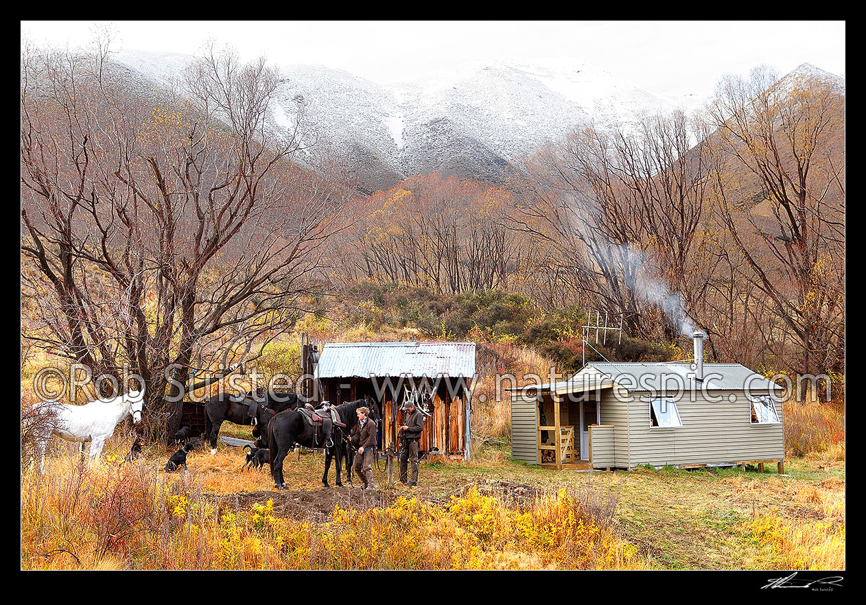 Image of Lake McRae Huts, old and new, with stockmen, horses and dogs getting ready for a muster day, Molesworth Station, Marlborough District, Marlborough Region, New Zealand (NZ) stock photo image