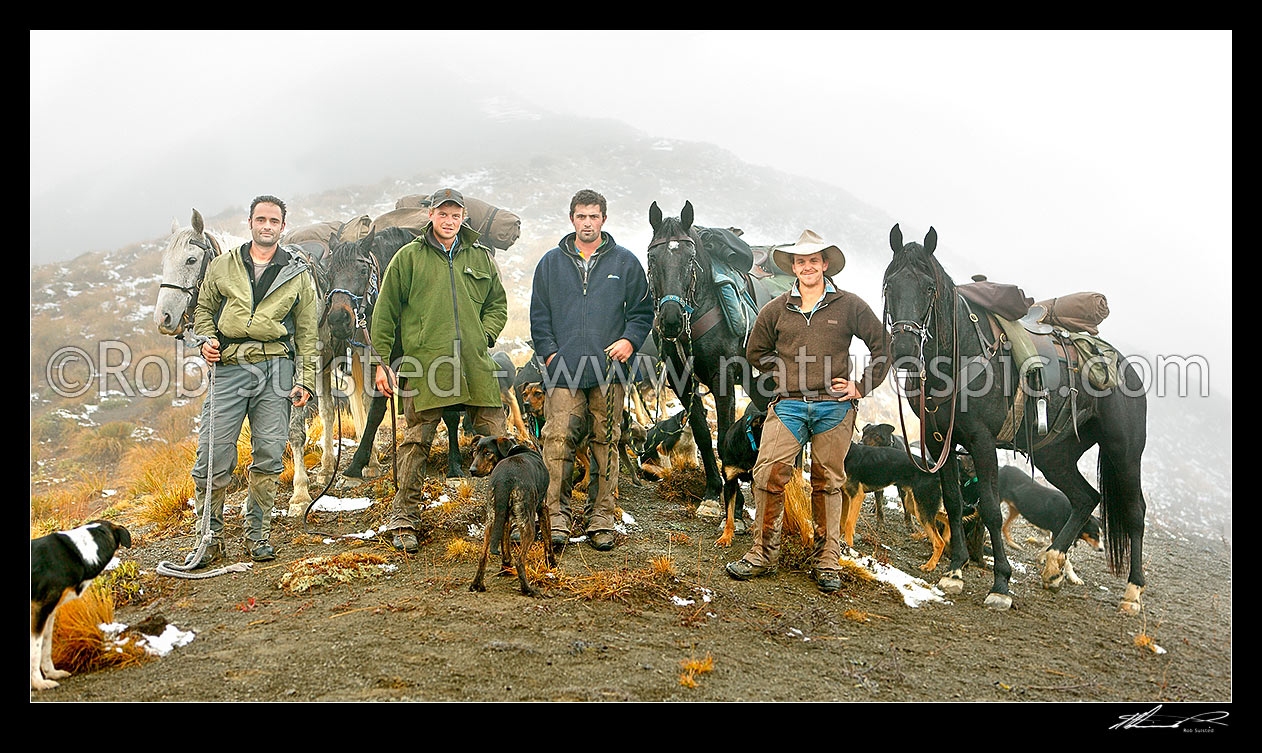 Image of Molesworth Station autumn muster team to Lake McRae on the Robinson Saddle: Rob Suisted (photos), Tom O'Sullivan, Cory Hollister, Andy McLachlan (head), Molesworth Station, Marlborough District, Marlborough Region, New Zealand (NZ) stock photo image