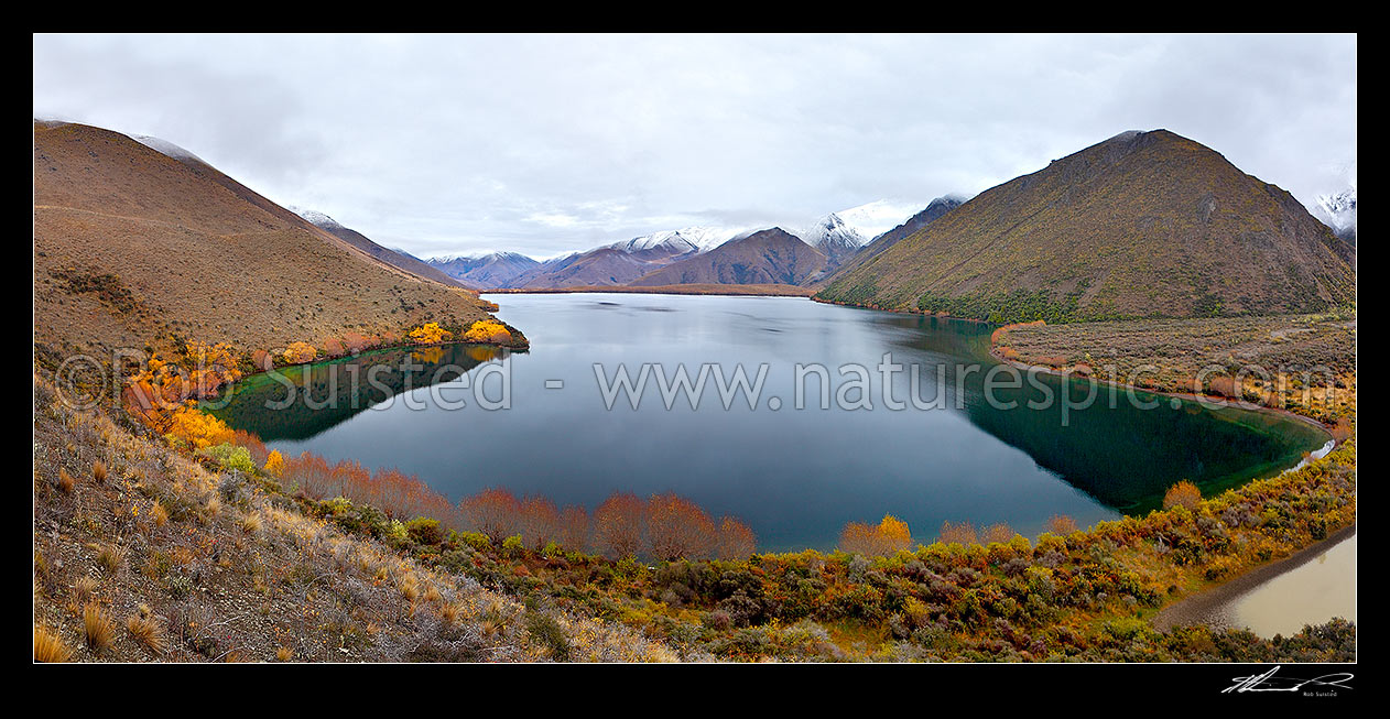 Image of Lake McRae in Autumn colours. Looking up the Tweed River valley and Inland Kaikoura Range right. Goat Valley Stream far right. Panorama, Molesworth Station, Marlborough District, Marlborough Region, New Zealand (NZ) stock photo image