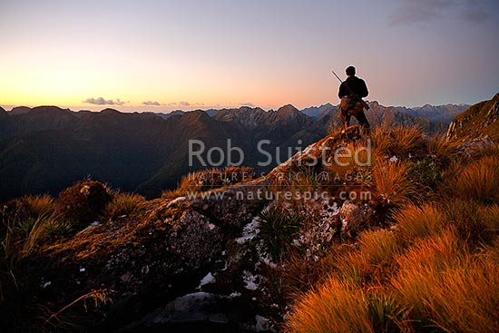 Deerstalker high above the George River on the Edith-George River tops searching for Wapiti at sunset. Overhead Cone behind hunter, George River, Fiordland National Park, Southland District, Southland Region, New Zealand (NZ) stock photo.
