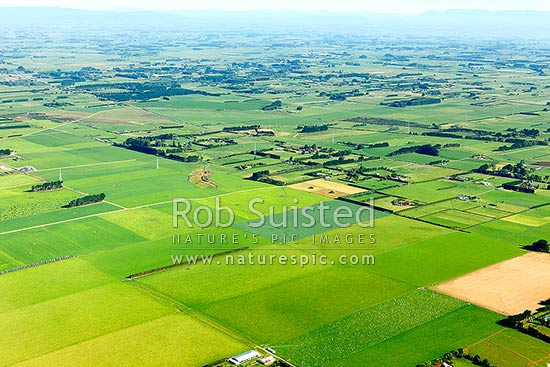 Farmland and lifestyle blocks on the outskirts of Invercargill, Invercargill, Southland District, Southland Region, New Zealand (NZ) stock photo.