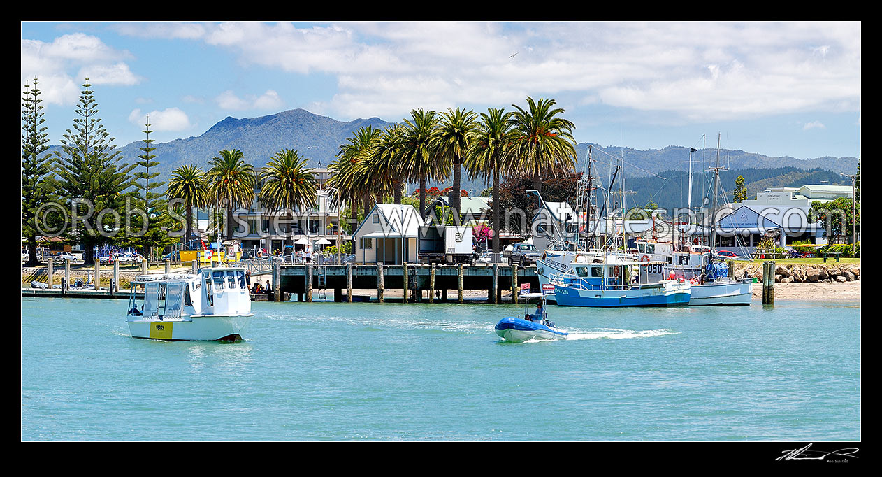 Whitianga New Zealand  City new picture : ... Region, New Zealand NZ stock photo image from New Zealand NZ