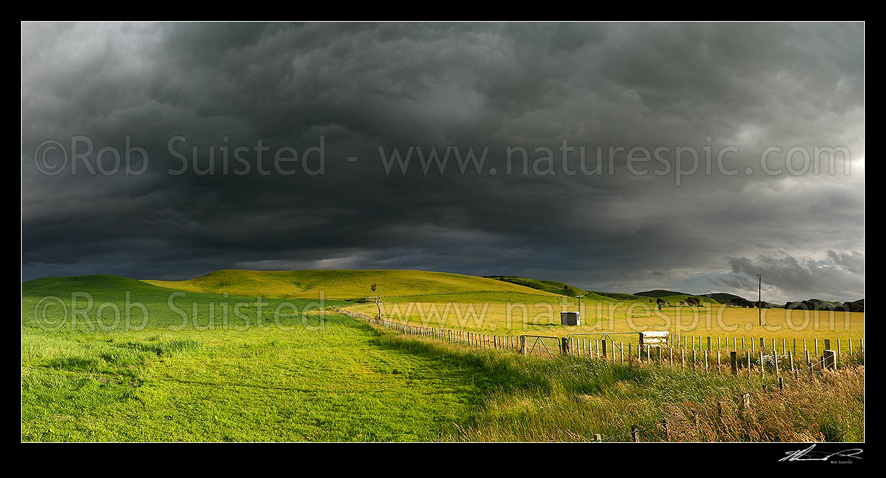Image of Dark moody stormy skies brewing above lush summer grass farmland in Central Hawke's Bay. Panorama, Dannevirke, Tararua District, Manawatu-Wanganui Region, New Zealand (NZ) stock photo image