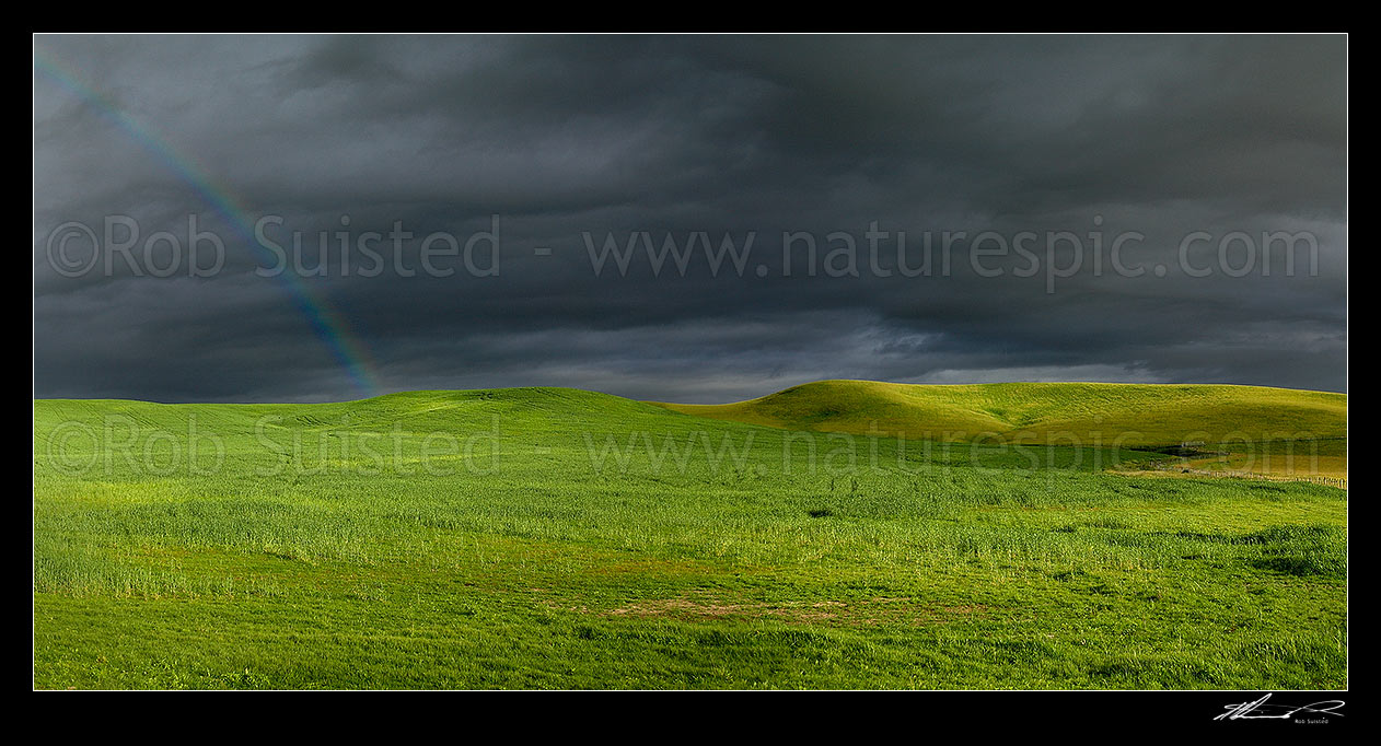 Image of Dark moody stormy skies brewing above lush summer grass farmland in Central Hawke's Bay, with rainbow. Panorama, Dannevirke, Tararua District, Manawatu-Wanganui Region, New Zealand (NZ) stock photo image