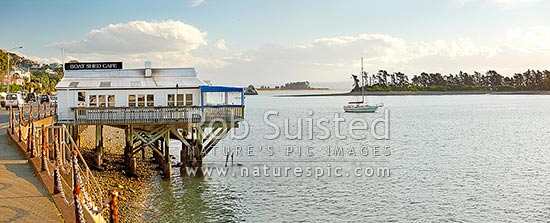 The Boatshed Café on the Nelson waterfront, with moored yacht in front of Haulashore Island. Panorama, Nelson, Nelson City District, Nelson Region, New Zealand (NZ) stock photo.