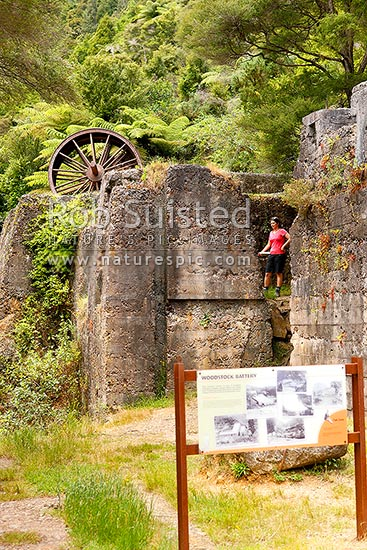 Historic Woodstock Battery ruins of the Woodstock gold mine in the Waitawheta Gorge goldfields, Waitawheta Windows Walk Track, Karangahake, Hauraki District, Waikato Region, New Zealand (NZ) stock photo.